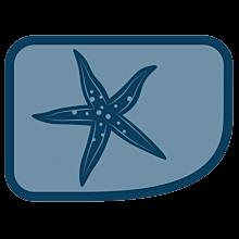 Patrullmärke Sjöstjärnan 10-Pack