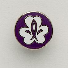 Equmenia Scout pin