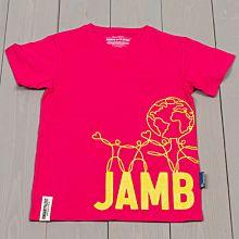 Jamboree 17 Wrap T-shirt Rosa Rak