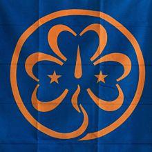 WAGGGS Flagga 138x85 cm