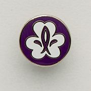 Equmenia Scout pin 10-pack