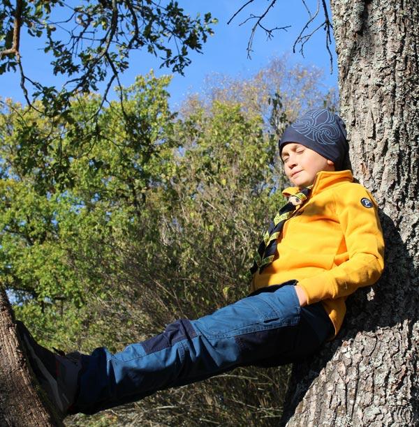 Scout sitter i ett träd och njuter av vårsolen.