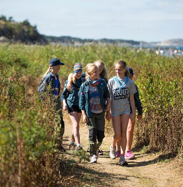 Scouter går på en stig vid vattnet en solig sommardag.