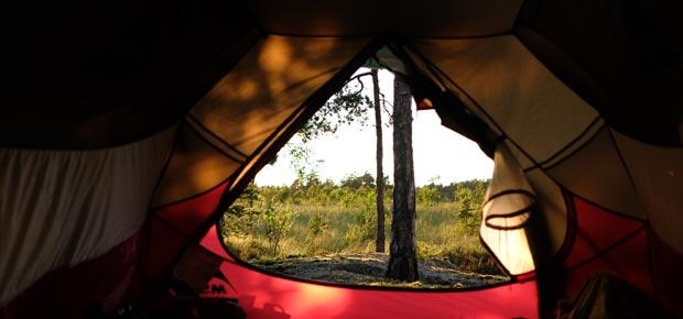 Foto tagit inifrån ett tält. Ute skymtar en sol och grönskande skog