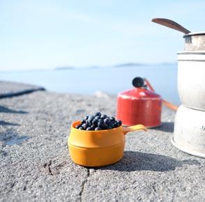 Vikkåsa från Wildo står på en klippa, i bakgrunden skymtar havet. Kåsan är fylld med blåbär